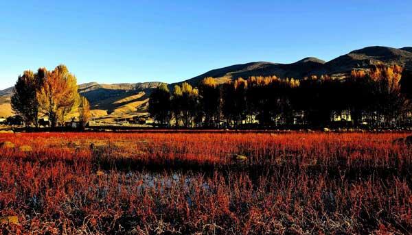 大香格里拉+滇藏线+川藏南线13日游